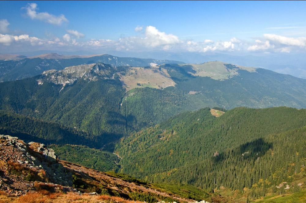 www.casabucureasa.ro - atractii turistice - Tarnov Capatanii